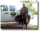 2009 North Carolina Wild Turkey Hunting Season